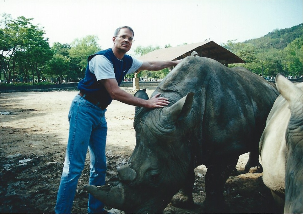 Taming a white rhino in Korea